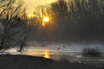 Paysages de Loire
